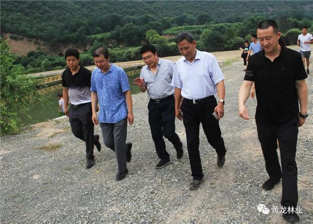 陕西省林业厅赴黄龙县核验省级绿化模范县创建工作