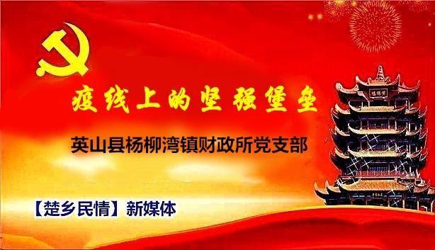 湖北英山县杨柳湾镇财政所党支部:疫线上的坚强堡垒