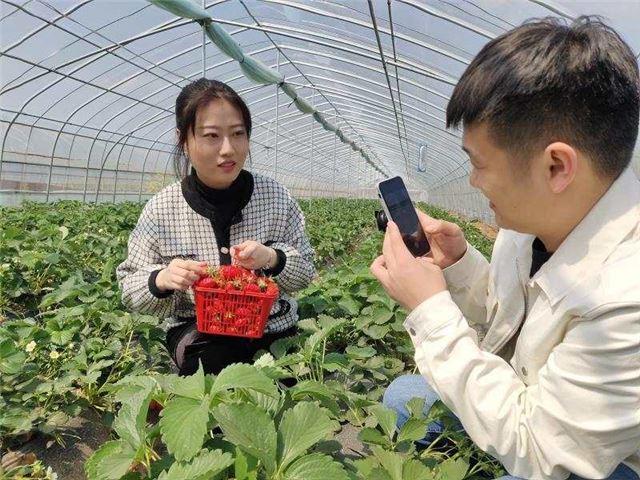 伊川县乡域观光农业前景好