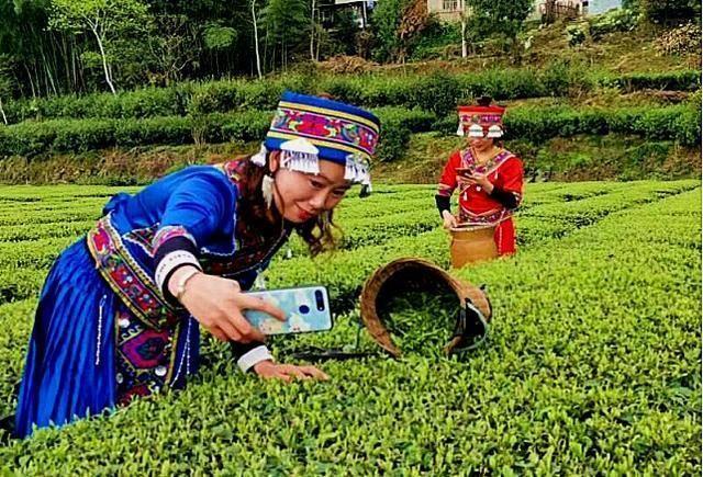 恩施宣恩:副县长开直播为茶农卖茶推动消费扶贫